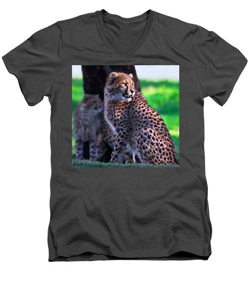 Cheetah Cub Men's V-Neck T-Shirt