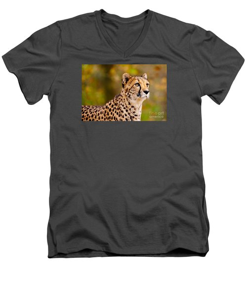 Cheetah In A Forest Men's V-Neck T-Shirt