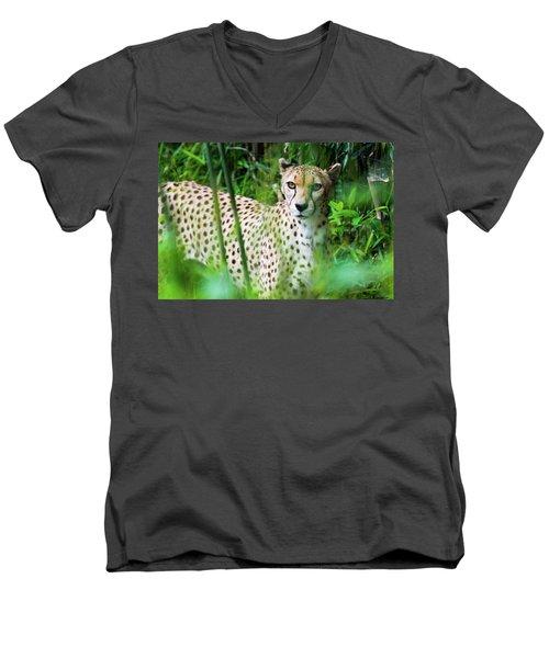 Cheetah Men's V-Neck T-Shirt