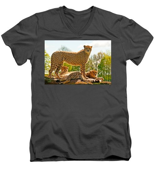 Cheetahs Three Men's V-Neck T-Shirt