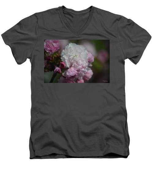 Cherry Blossom 2 Men's V-Neck T-Shirt