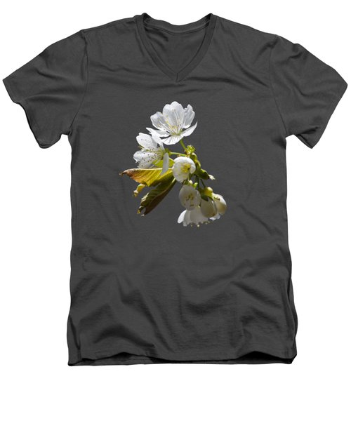 Cherry Blossoms Men's V-Neck T-Shirt