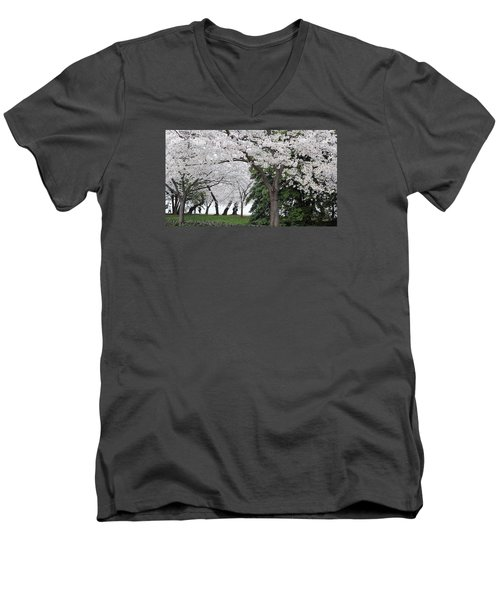 Cherry Blossoms Washington Dc Men's V-Neck T-Shirt