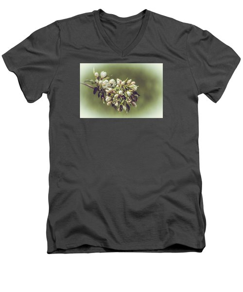 Cherry Blossoms Men's V-Neck T-Shirt by Yeates Photography