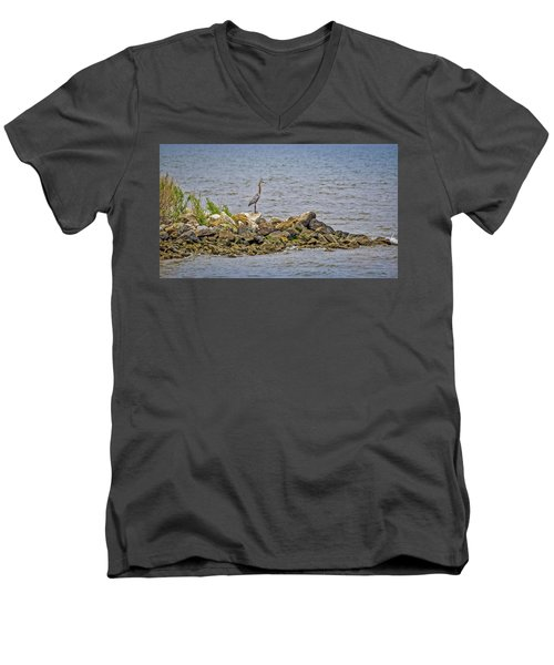 Chesapeake Bay Great Blue Heron Men's V-Neck T-Shirt