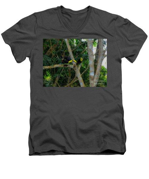 Chestnut-mandibled Toucans Men's V-Neck T-Shirt