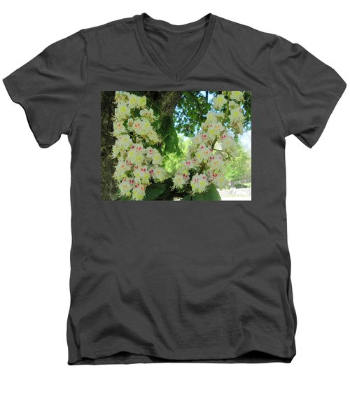 Chestnut Tree Flowers Men's V-Neck T-Shirt by Paul Meinerth