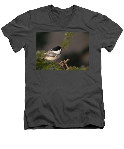 Men's V-Neck T-Shirt featuring the photograph Chickadee In The Shadows by Susan Capuano