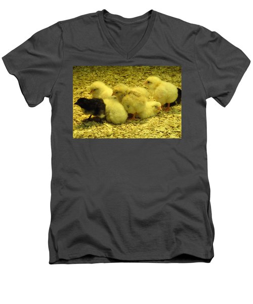 Men's V-Neck T-Shirt featuring the photograph Chicks by Laurel Best