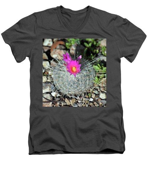 Chihuahua Snowball 3 Men's V-Neck T-Shirt