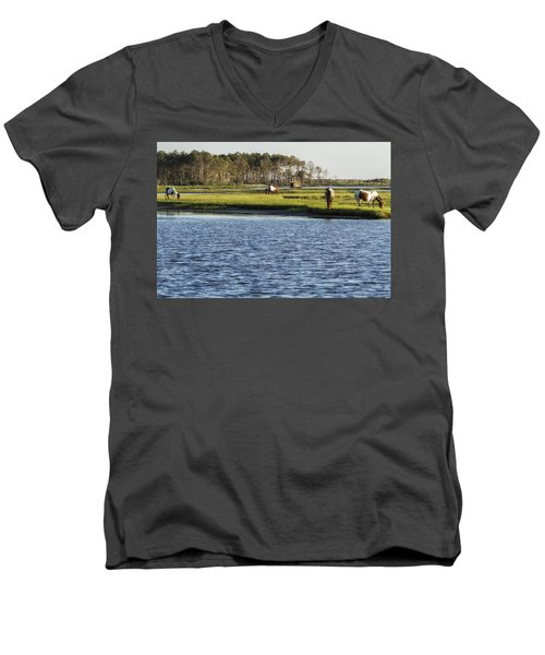 Chincoteague Ponies On Assateague Island Men's V-Neck T-Shirt
