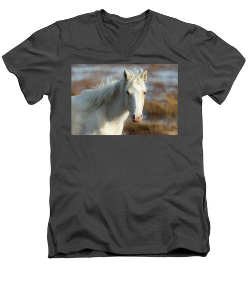 Chincoteague White Pony Men's V-Neck T-Shirt