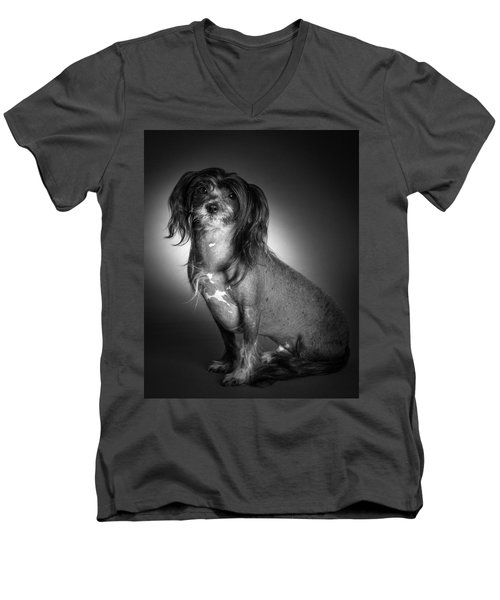 Chinese Crested - 01 Men's V-Neck T-Shirt by Larry Carr