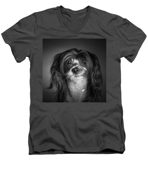 Men's V-Neck T-Shirt featuring the photograph Chinese Crested - 02 by Larry Carr