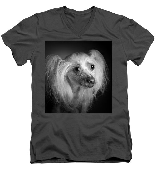 Men's V-Neck T-Shirt featuring the photograph Chinese Crested - 04 by Larry Carr