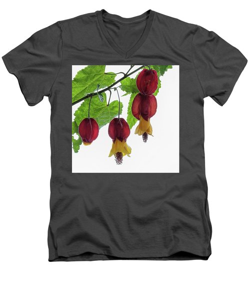 Chinese Lantern 4 Men's V-Neck T-Shirt