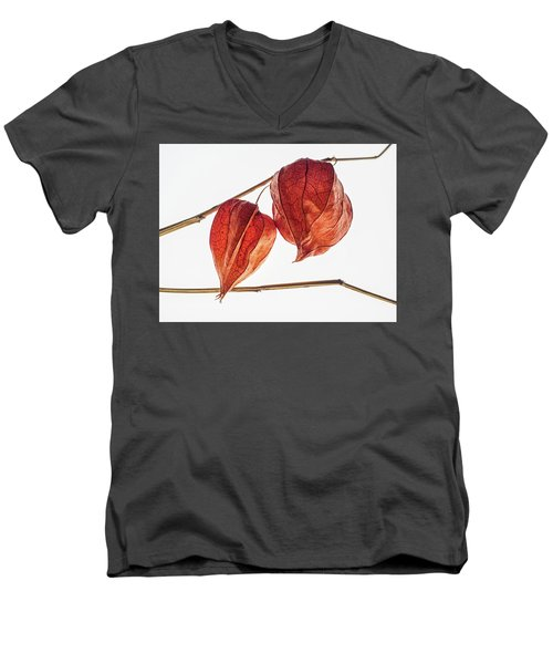 Chinese Paper Lantern Pods Men's V-Neck T-Shirt
