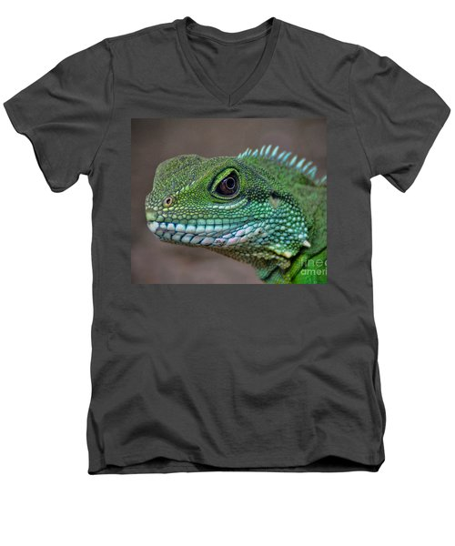 Chinese Water Dragon Men's V-Neck T-Shirt