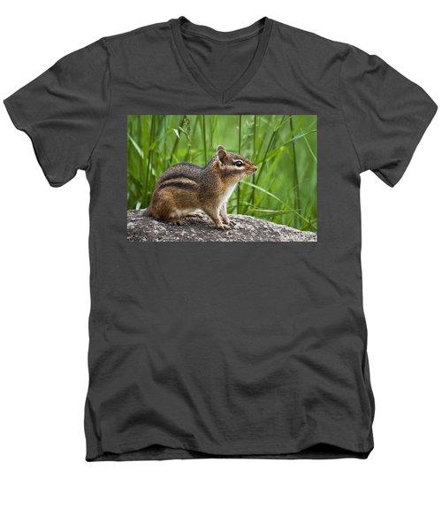 Chipmunk Men's V-Neck T-Shirt