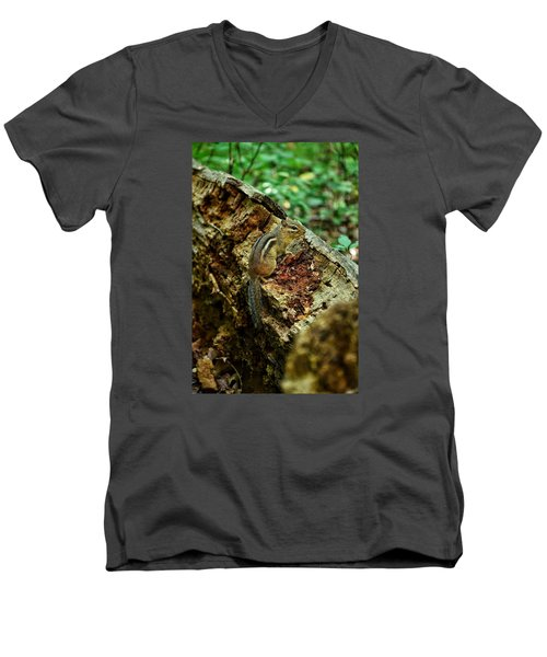 Men's V-Neck T-Shirt featuring the photograph Chipmunk by Nikki McInnes