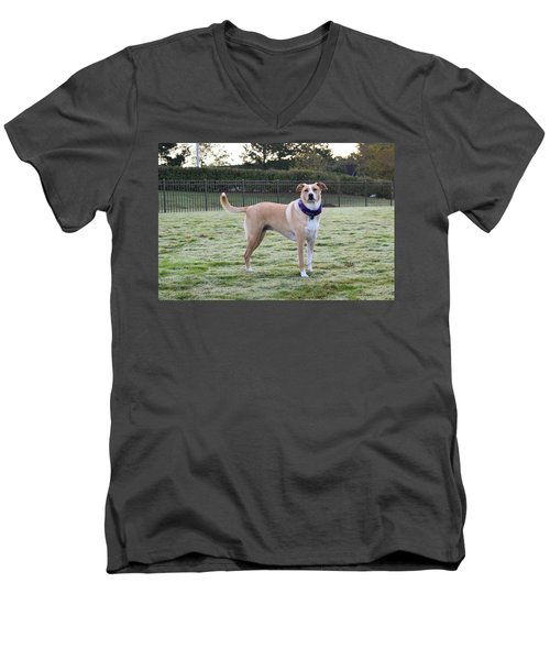 Chloe At The Dog Park Men's V-Neck T-Shirt