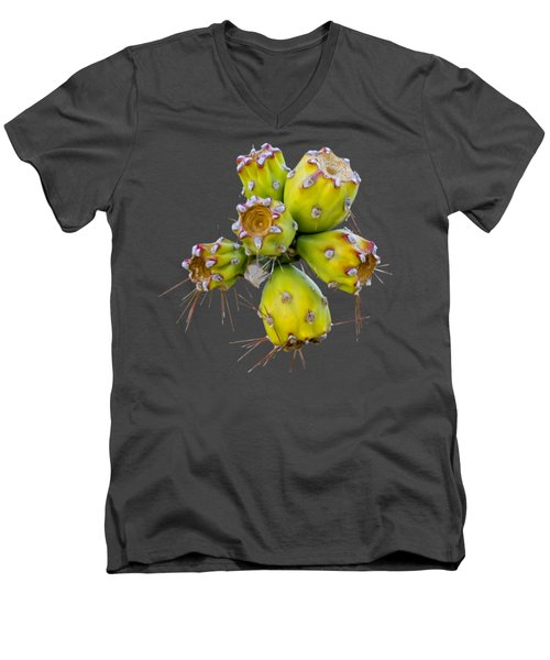 Men's V-Neck T-Shirt featuring the photograph Cholla Fruit S48 by Mark Myhaver