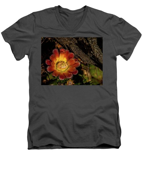 Cholla Men's V-Neck T-Shirt by Martina Thompson