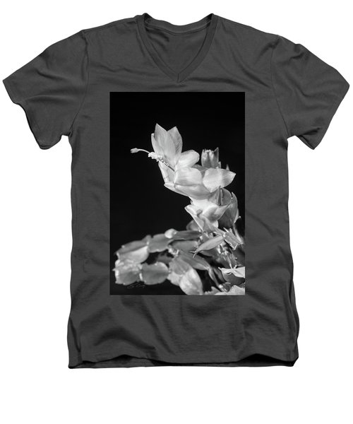 Christmas Cactus On Black Men's V-Neck T-Shirt by Ed Cilley