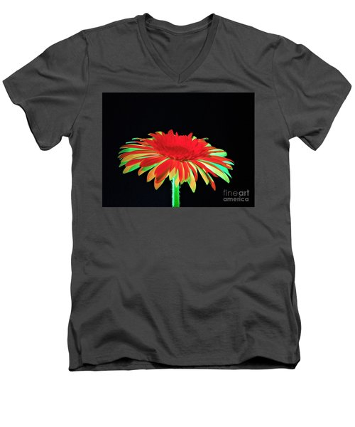 Christmas Daisy Men's V-Neck T-Shirt