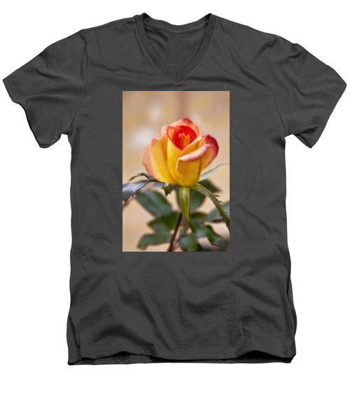 Men's V-Neck T-Shirt featuring the photograph Christmas Rose by Joan Bertucci