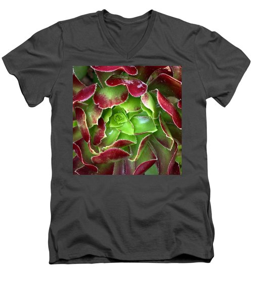 Christmas Succulent Men's V-Neck T-Shirt by Russell Keating