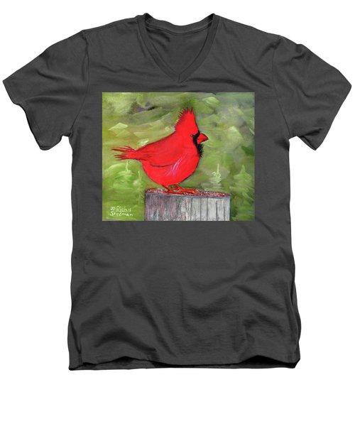 Christopher Cardinal Men's V-Neck T-Shirt