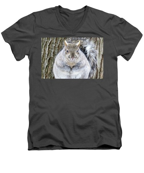 Chubby Squirrel Men's V-Neck T-Shirt