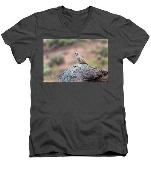 Chukar Partridge 2 Men's V-Neck T-Shirt by Leland D Howard