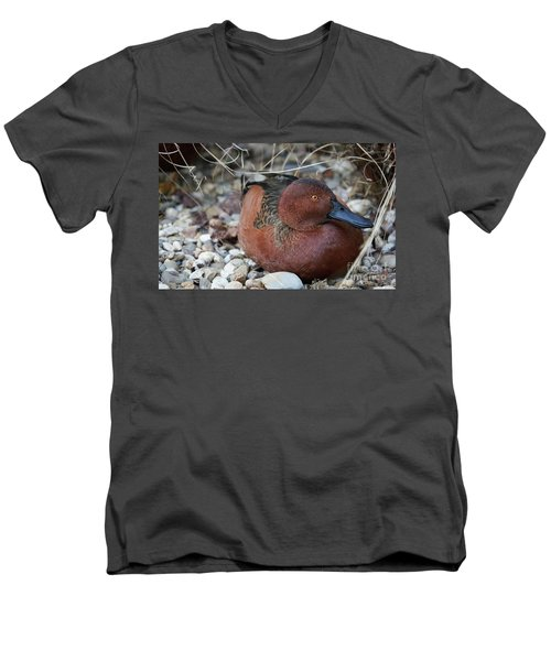 Cinnamon Teal Men's V-Neck T-Shirt