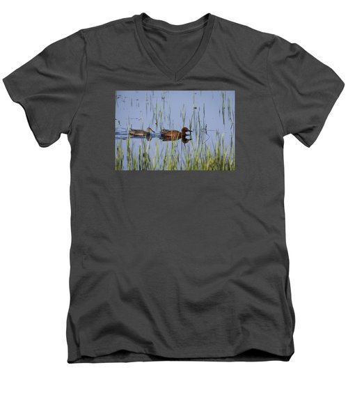 Cinnamon Teal Pair Men's V-Neck T-Shirt