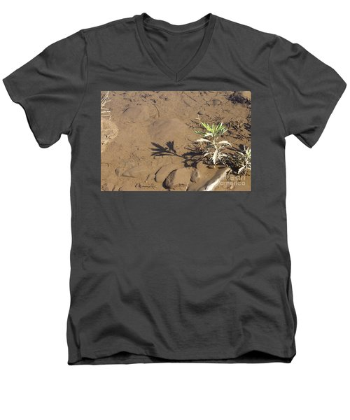 Men's V-Neck T-Shirt featuring the photograph Circle Shadow Plant by Marie Neder
