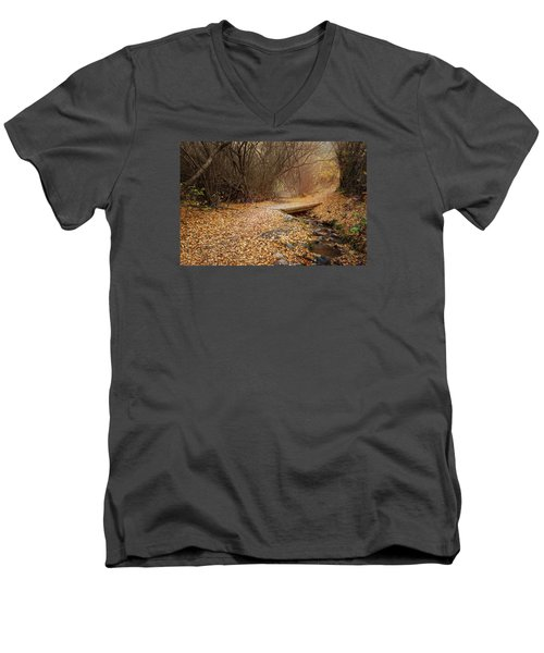 City Creek Men's V-Neck T-Shirt
