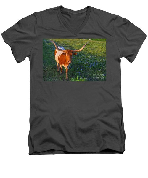 Classic Spring Scene In Texas Men's V-Neck T-Shirt