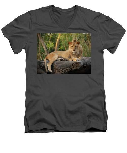 Classic Young Male Men's V-Neck T-Shirt