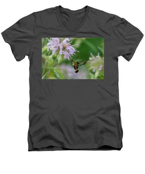Clearwing Moth Men's V-Neck T-Shirt