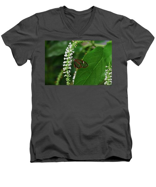 Clearwing Butterfly Men's V-Neck T-Shirt by Ronda Ryan