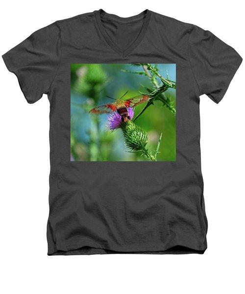 Clearwing Hummingbird Moth Men's V-Neck T-Shirt
