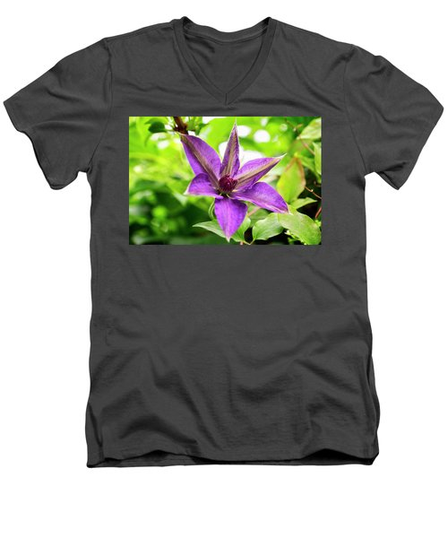 Clematis Vine II Men's V-Neck T-Shirt