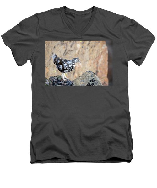 Cliffside Ptarmigan Men's V-Neck T-Shirt
