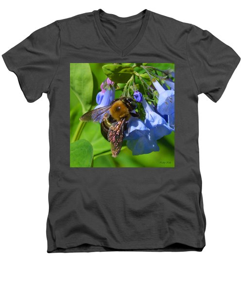 Cling On Men's V-Neck T-Shirt by Kathy Kelly