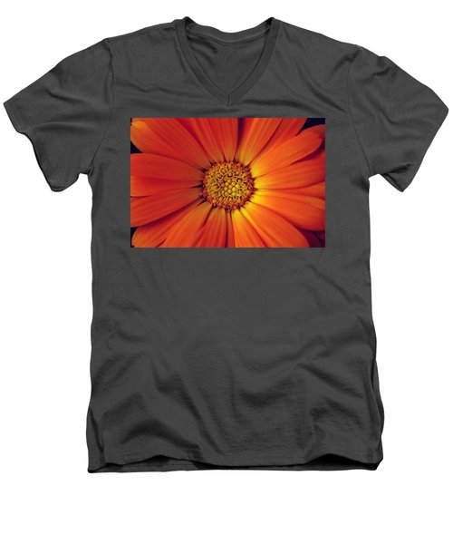 Close Up Of An Orange Daisy Men's V-Neck T-Shirt