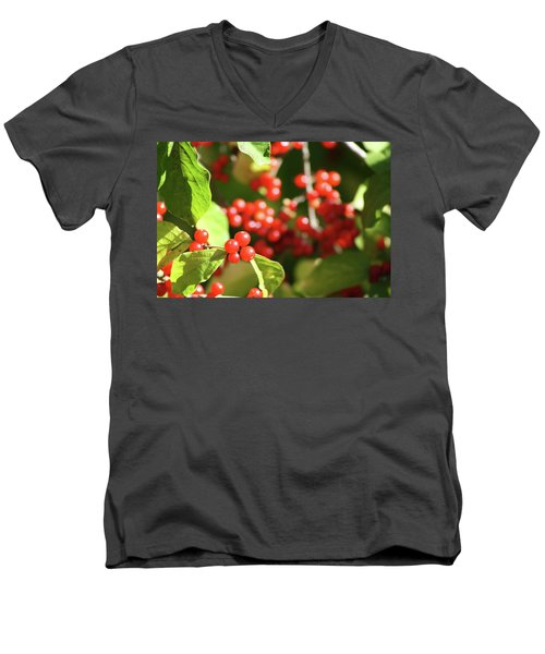 Close Up Of Red Berries Men's V-Neck T-Shirt by Michele Wilson