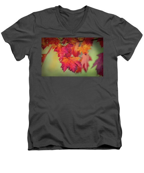 Close-up Of Red Maple Leaves In Autumn Men's V-Neck T-Shirt