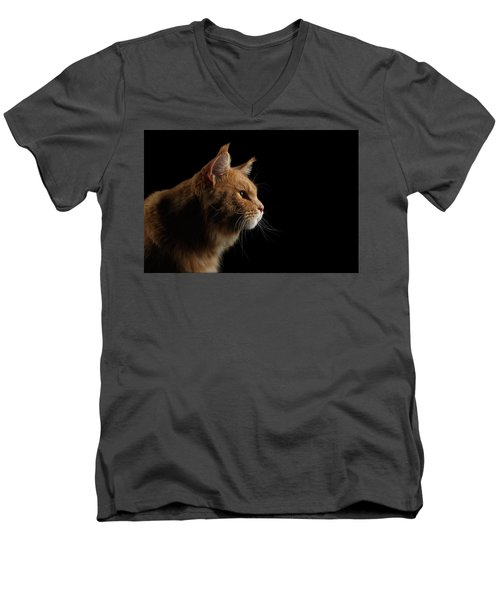 Men's V-Neck T-Shirt featuring the photograph Close-up Portrait Ginger Maine Coon Cat Isolated On Black Background by Sergey Taran